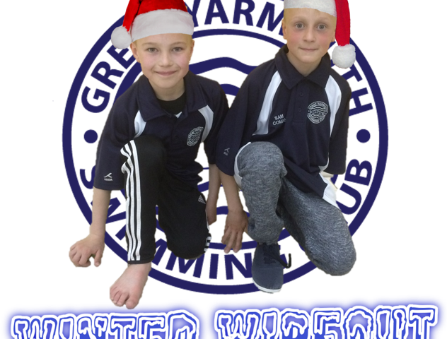 Winter Wipout Logo