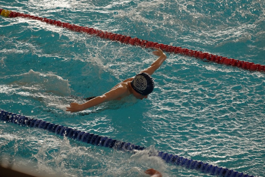 Swans open gala report great yarmouth swimming club - Great yarmouth swimming pool times ...