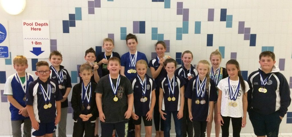 Development gala september 2017 report great yarmouth - Great yarmouth swimming pool times ...